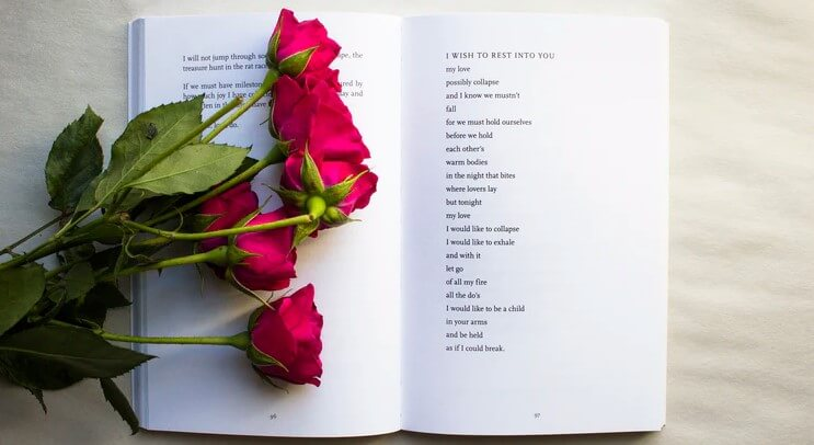 Important Poetry Techniques To Learn